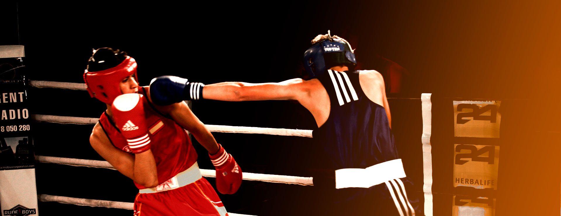 Algarve Box Cup